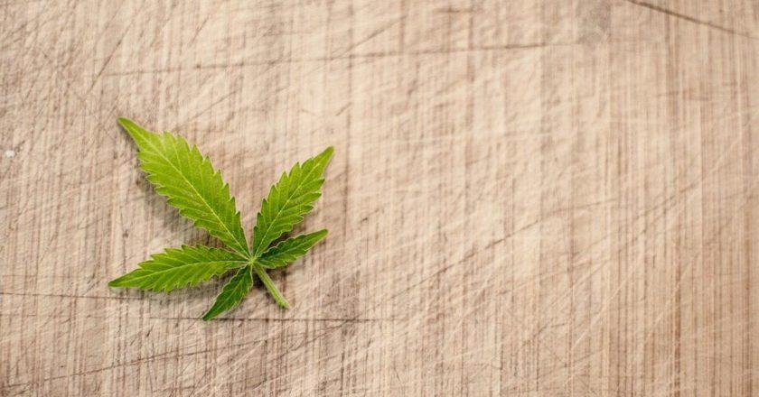 Lampy przeznaczone do hodowli marihuany
