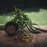 Specjalistyczny sprzęt do uprawy marihuany